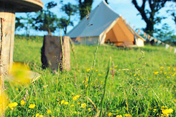 Eco-Living – Eco Friendly Camping